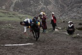 Horse Racing Festival (Yartung) is celebrated in Samdo.JPG