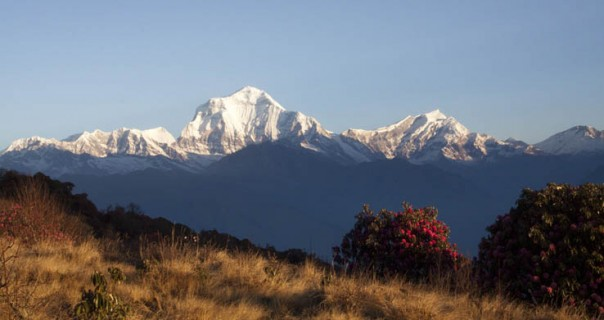 School Expedition: Annapurna Panorama, White Water Rafting and Chitwan National Park