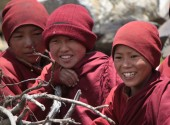 Group of Young Buddhist Monks.JPG